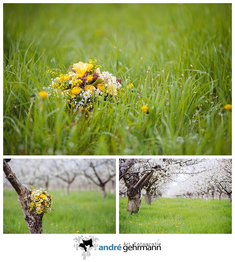 Kirschblüte, Frühling, Brautstrauss