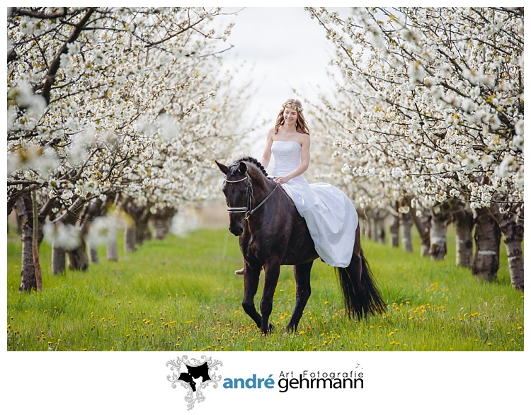 Kirschblüte, Frühling, Braut, Brautstrauss, Pferd, Märchen
